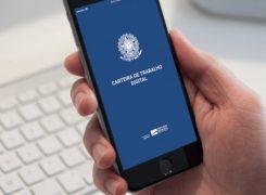 Aprenda como obter a Carteira de Trabalho e Previdência Social Digital